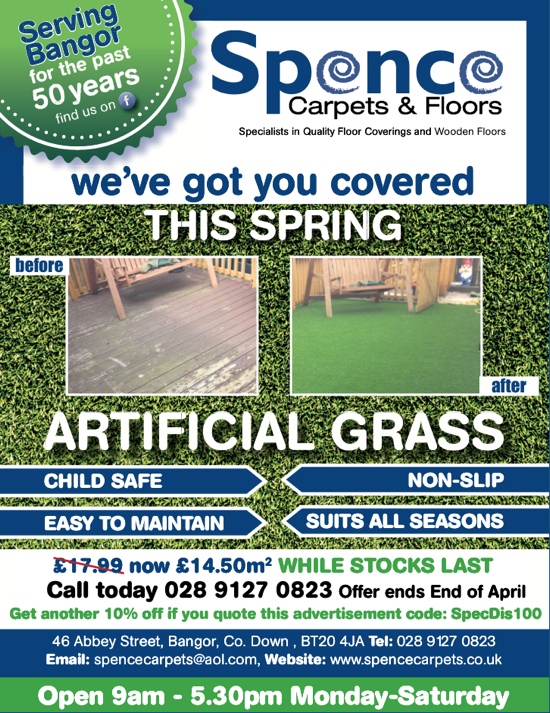 Artificial Grass Bangor